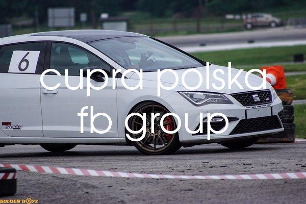 cupra polska fb group